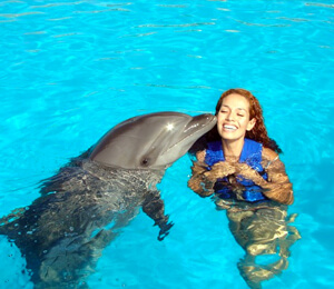 Swim With Dolphins Cabo